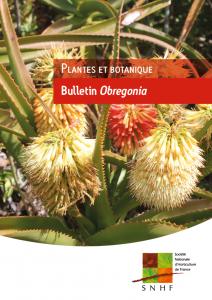 section cactées et succulentes