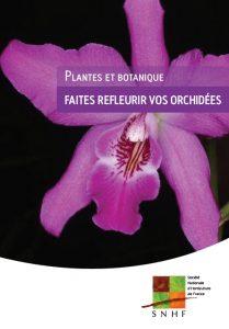 section orchidées