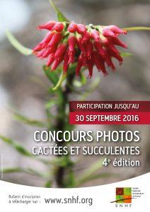 concours photos cactées et succulentes