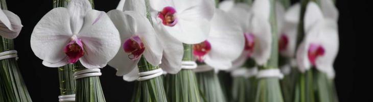 art floral à la SNHF