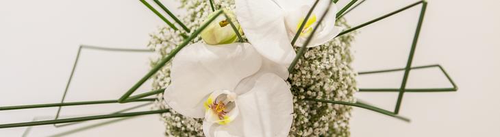 art floral SNHF