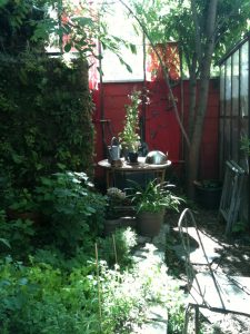 Jardin en devenir Prix Bonpland 2013 // Jardin de Camille They