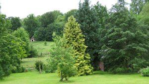 Jardin en devenir Prix Bonpland 2014 // Jardin de M. Beauvallet © F. Pernel