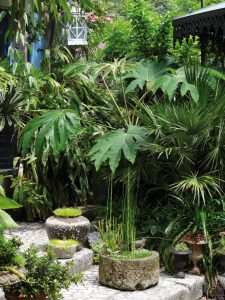 2e prix Bonpland 2015 // Jardin de Bésignoles