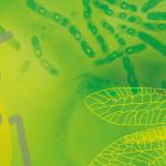 Journée biocontrôle Paris