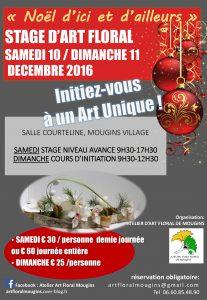 2016-12-stage-dart-floralles-10-et-11-12-2016