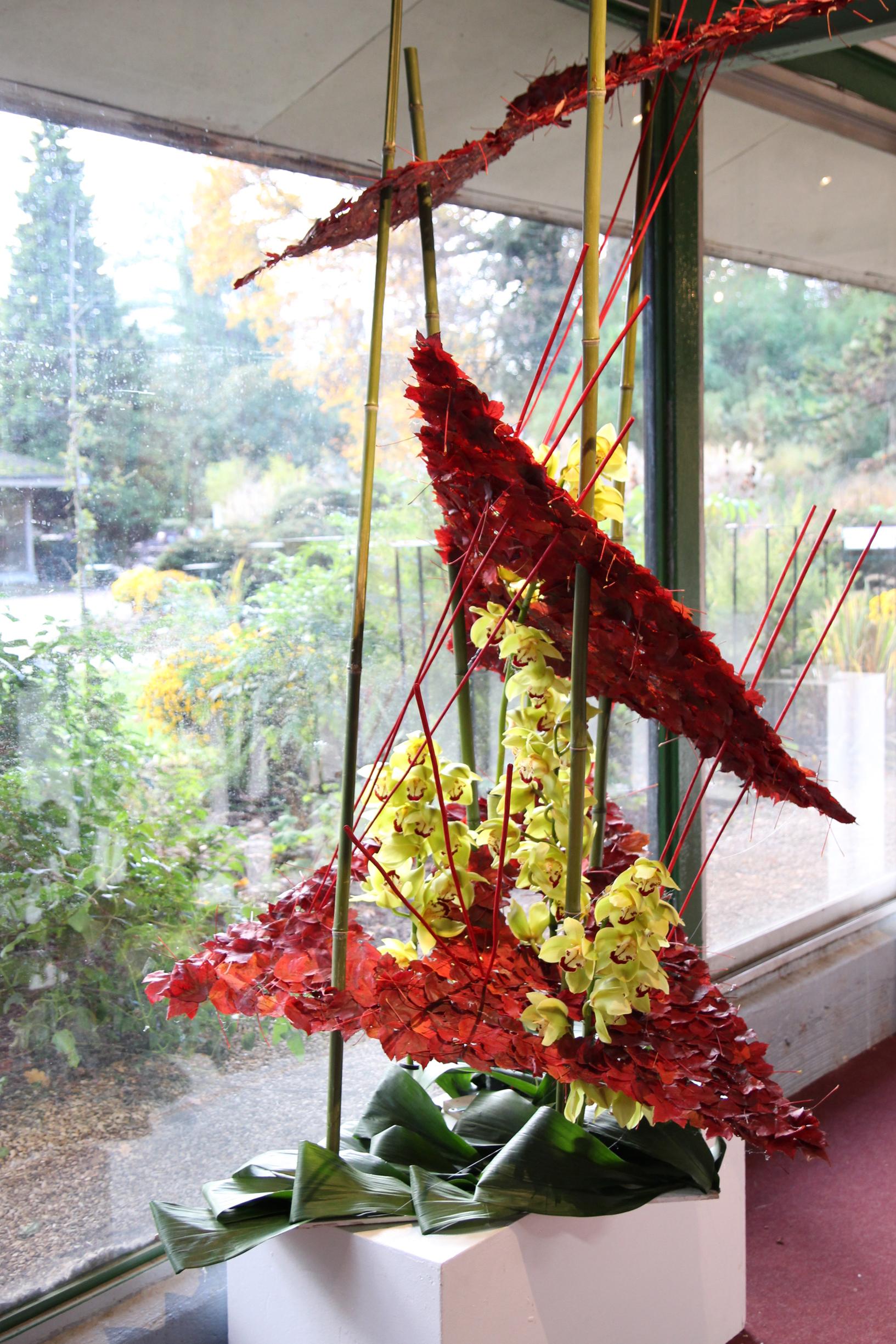 Orchidées expo-vente au Parc Floral