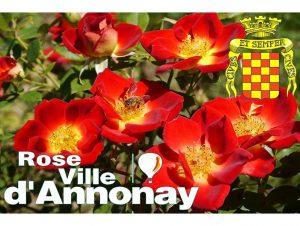 Rose Ville D'Annonay