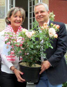Rose de Lourdes