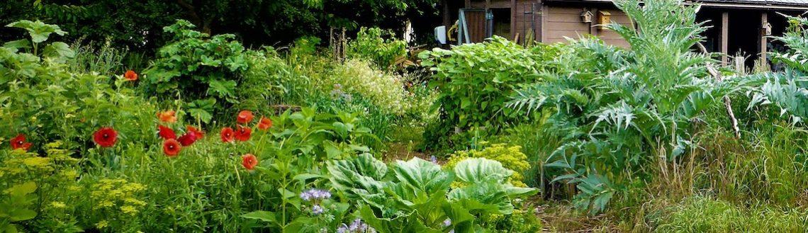 c4e6b35b9718 Accueil - Société Nationale d'Horticulture de France