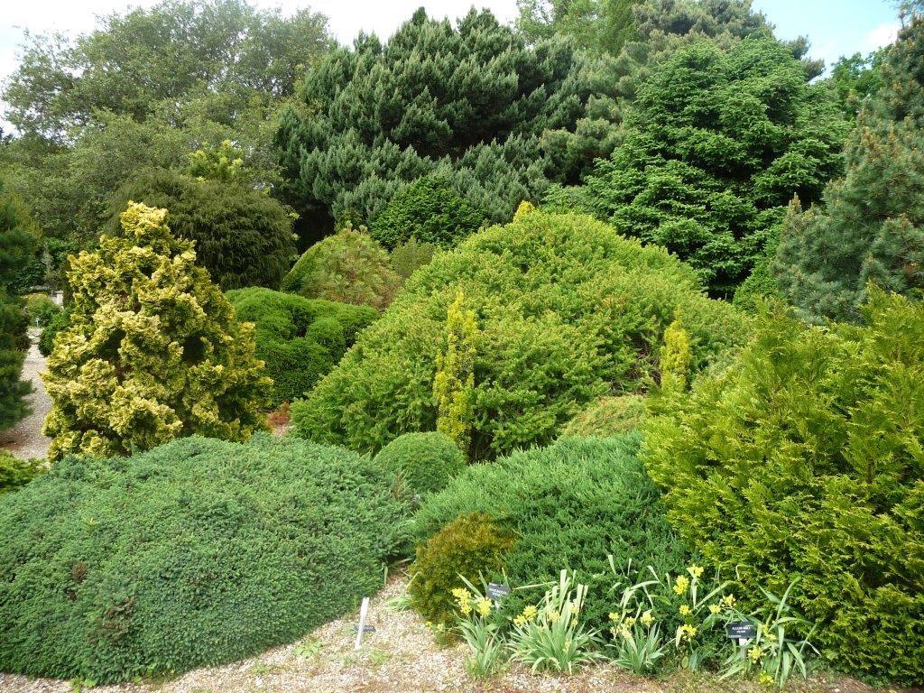 Sir Harold Hillier Gardens