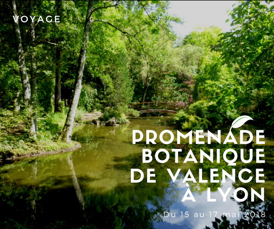 Voyage promenade botanique de valence lyon soci t for Pro du jardin