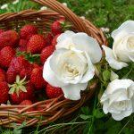 Confiture de rose et de fraises