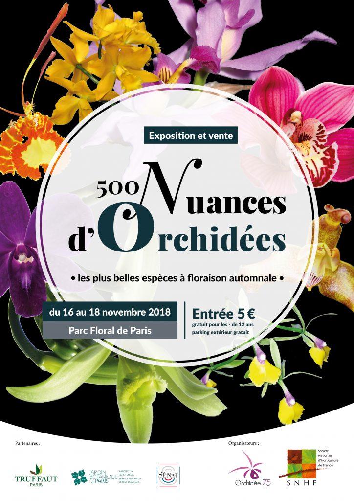 500 nuances d'orchidées