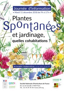 Plantes spontanées - Affiche