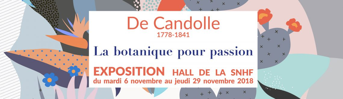 Exposition Candolle